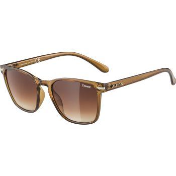 Alpina YEFE, sunčane naočare, braon