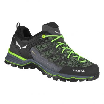 Salewa MTN TRAINER LITE GTX, muške cipele za planinarenje, zelena
