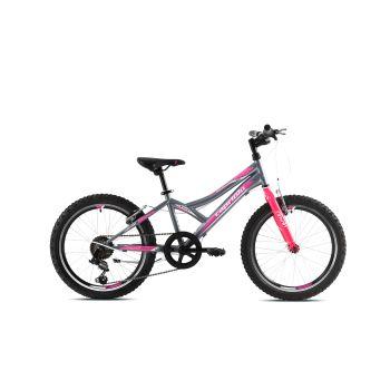 Capriolo DIAVOLO 200, dječiji mtb bicikl, siva