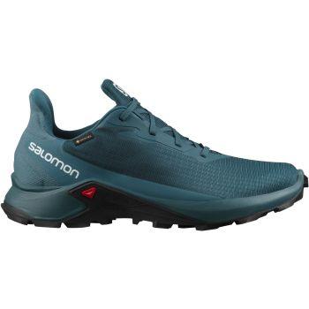 Salomon ALPHACROSS 3 GTX, muške patike za trail trčanje, plava